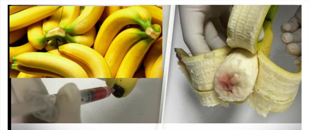 frutas con vih 1