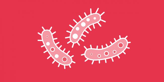 a hepatitis lefogyhat-e