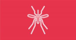 Zika y Dengue