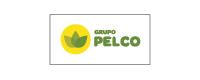 Logo Grupo Pelco
