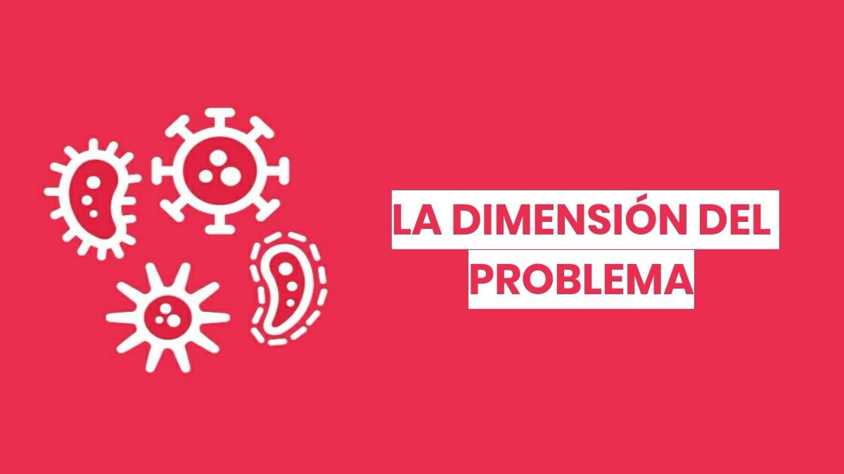 La dimensión del problema